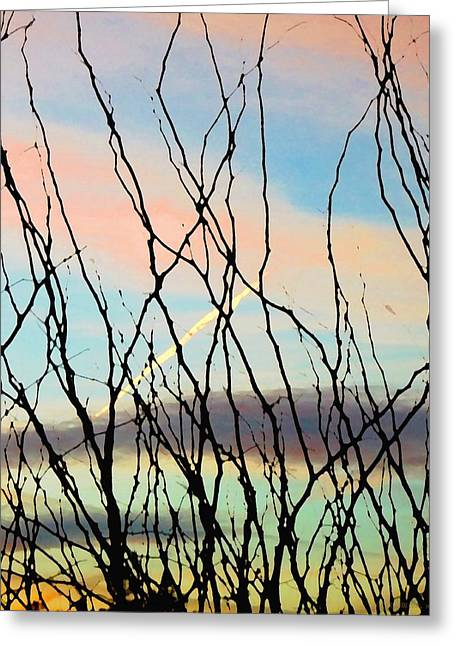 Reaching Toward The Sky Greeting Card