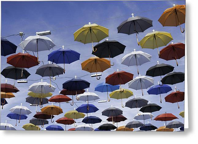 Ready For A Rainy Day Greeting Card by Phyllis Taylor