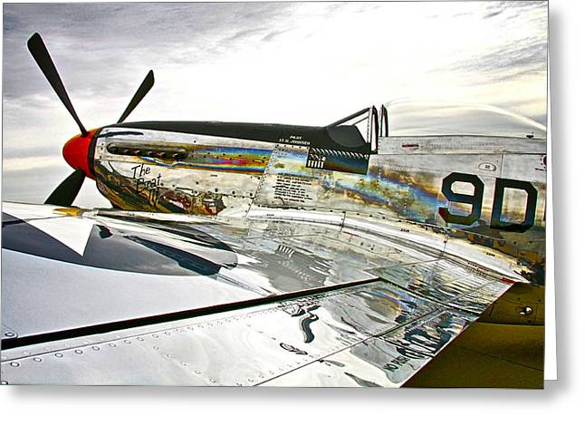 Ready To Fly Greeting Card by Chas Burnam