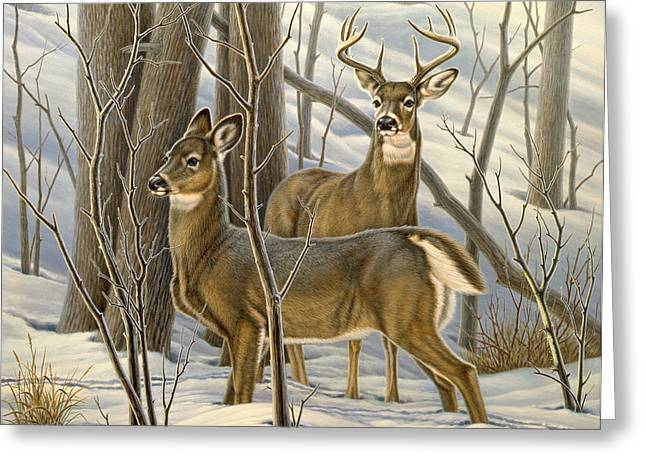 Ready - Whitetail Deer Greeting Card