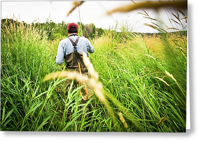 Rear View Of Fly Fisherman Walks Greeting Card