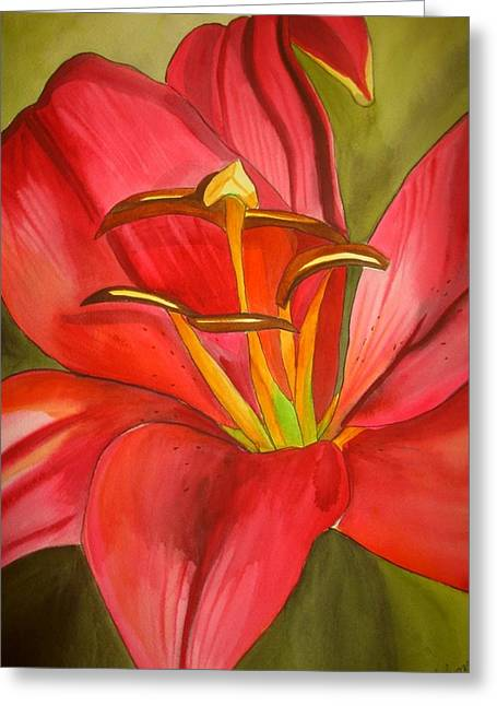 Red Alert Lily Greeting Card by Sacha Grossel