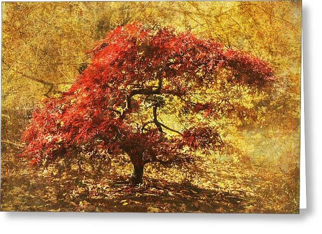 Red And Gold Greeting Card