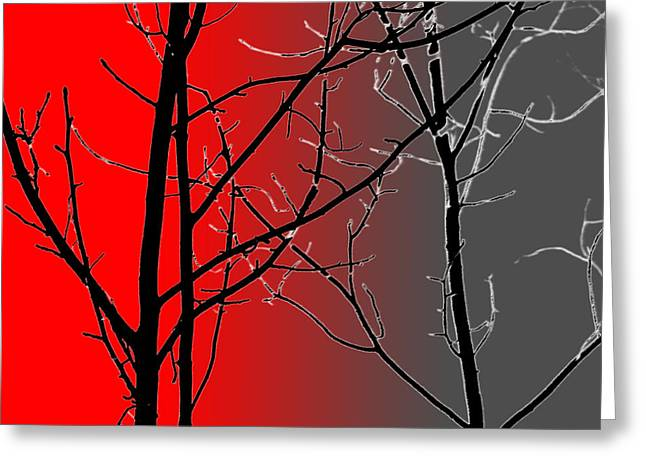 Red And Gray Greeting Card by Cynthia Guinn