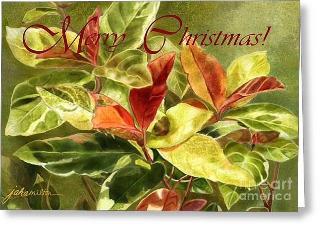 Red And Green Leaves Christmas Card Greeting Card