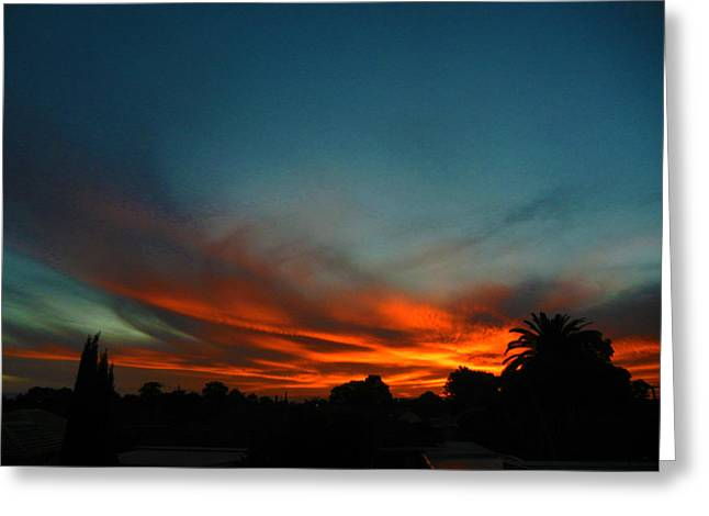 Red And Green Sunset Greeting Card by Mark Blauhoefer