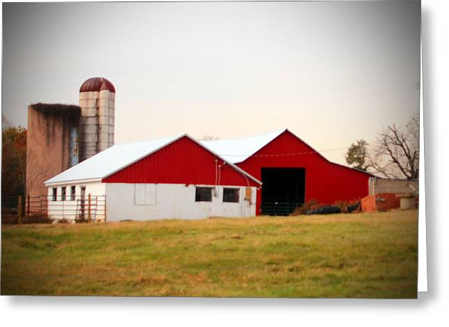 Red And White Barn Greeting Card by Cynthia Guinn