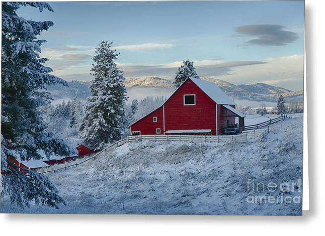 Red And White Greeting Card by Idaho Scenic Images Linda Lantzy