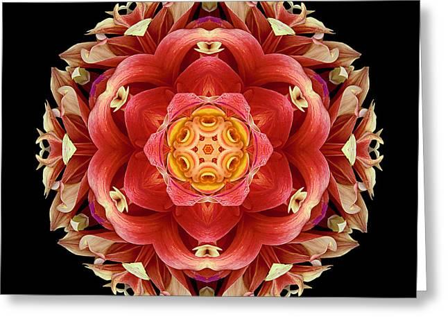 Red And Yellow Dahlia IIi Flower Mandala Greeting Card by David J Bookbinder