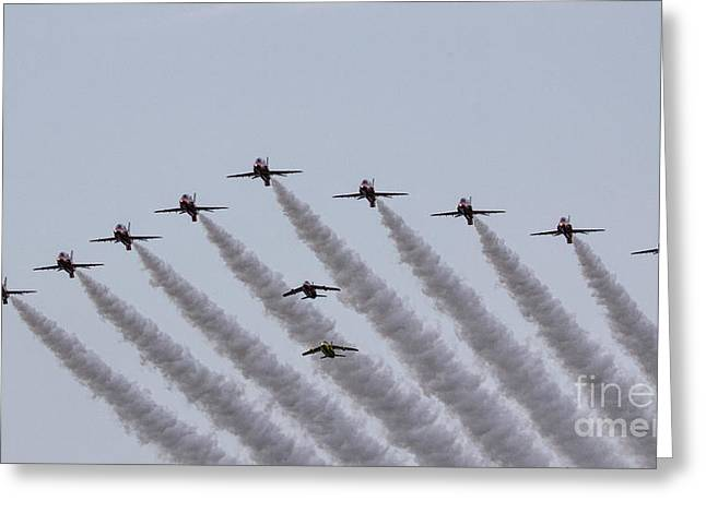 Red Arrows And Gnats Greeting Card by J Biggadike