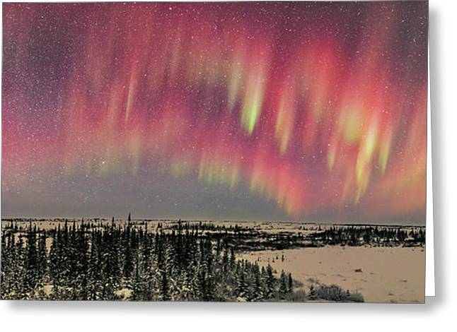 Red Aurora Panorama 1 Feb 12, 2016 Greeting Card by Alan Dyer