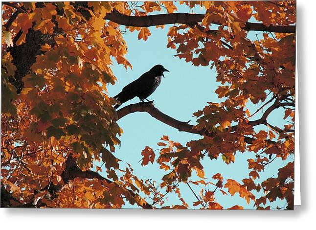 Red Autumn Tree And Blackbird Greeting Card