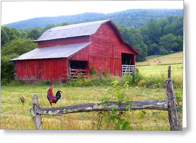 Red Barn And Rooster Greeting Card