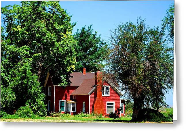 Greeting Card featuring the photograph Red Barn And Trees by Matt Harang