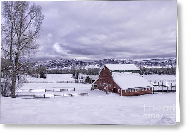 Red Barn At Lamb Ranch Greeting Card