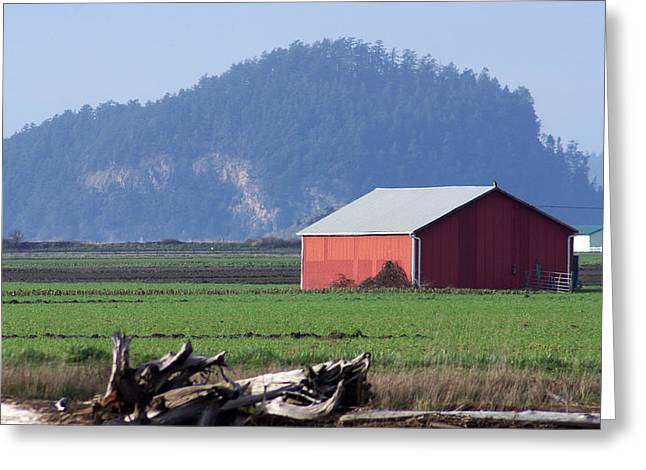 Greeting Card featuring the photograph Red Barn by Erin Kohlenberg