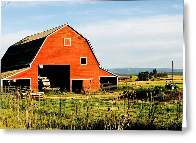 Red Barn In Field Near Joseph, Wallowa Greeting Card