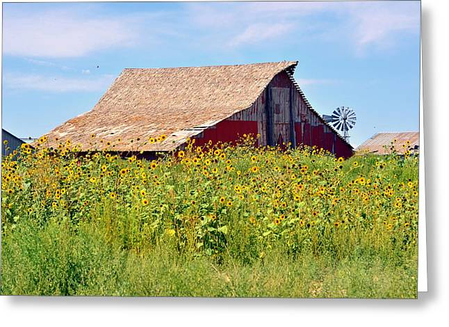 Red Barn In Summer Greeting Card by Clarice  Lakota