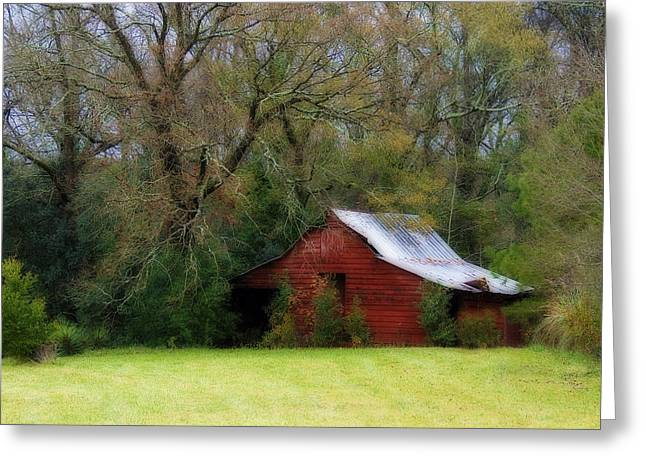 Red Barn Greeting Card by Steven Richardson