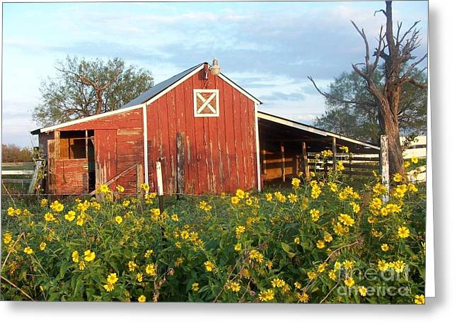Red Barn With Wild Sunflowers Greeting Card