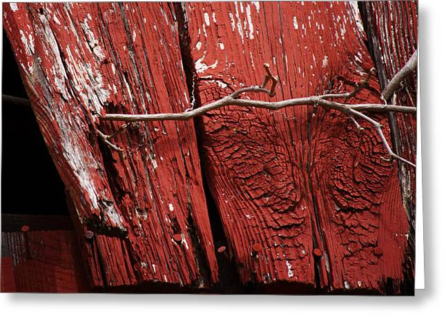 Red Barn Wood With Dried Vine Greeting Card by Rebecca Sherman