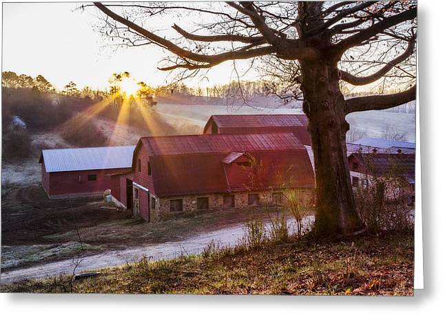 Red Barns At Dawn Greeting Card by Debra and Dave Vanderlaan