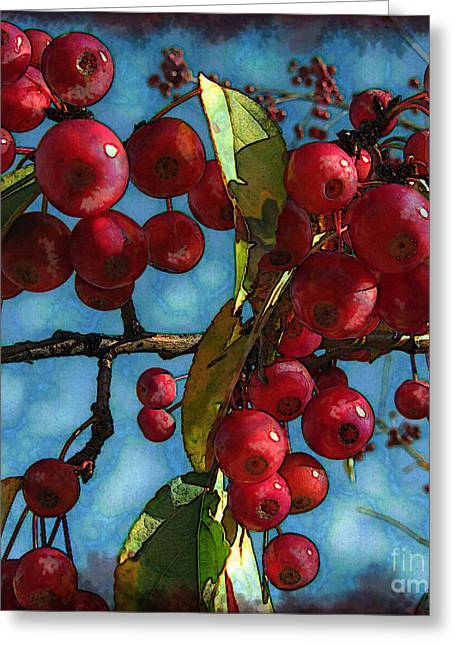 Red Berries Greeting Card by Colleen Kammerer