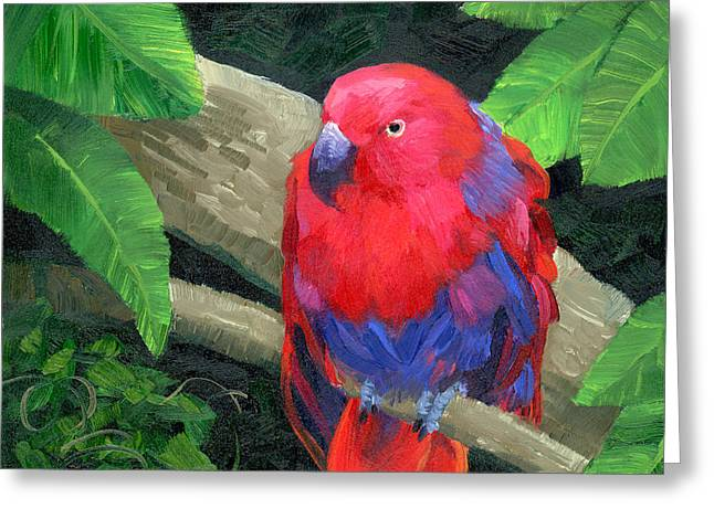 Red Bird Greeting Card