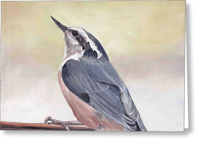 Red Breasted Nuthatch Greeting Card by Charlotte Yealey