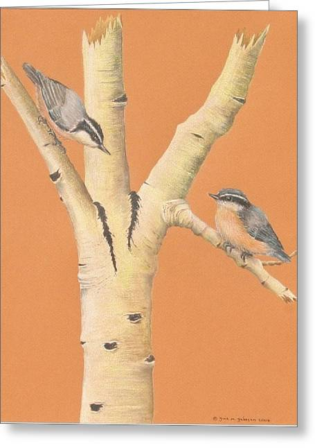 Red-breasted Nuthatches On Aspen Greeting Card by Gina Gahagan