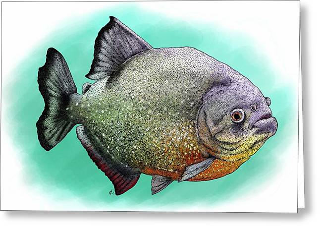 Red Breasted Piranha Greeting Card