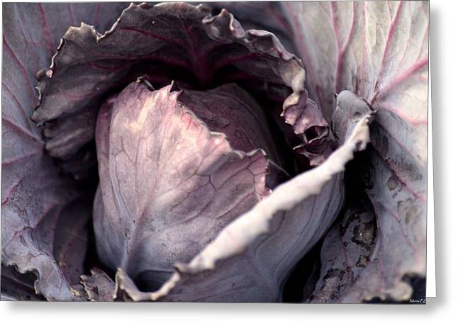 Red Cabbage Greeting Card by Maria Urso