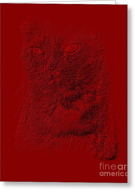 Red Cat Collection. Special... Greeting Card