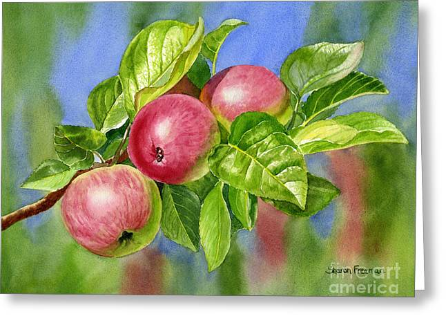 Red Cider Apples With Background Greeting Card