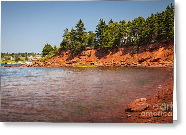 Red Cliffs Of Prince Edward Island Greeting Card by Elena Elisseeva