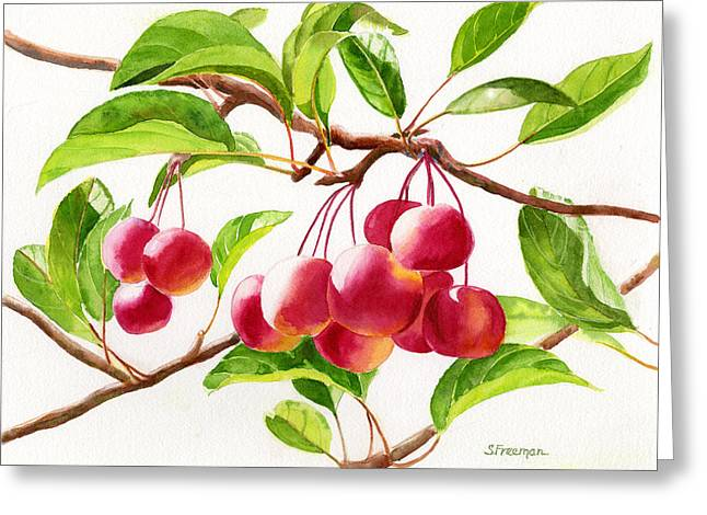 Red Crab Apples Greeting Card by Sharon Freeman
