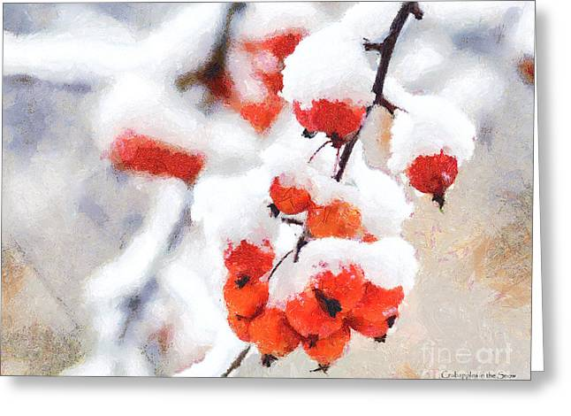 Red Crabapples In The Winter Snow - A Digital Painting By D Perry Lawrence Greeting Card