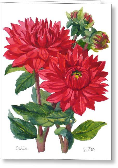 Red Dahlias Greeting Card by Janet  Zeh