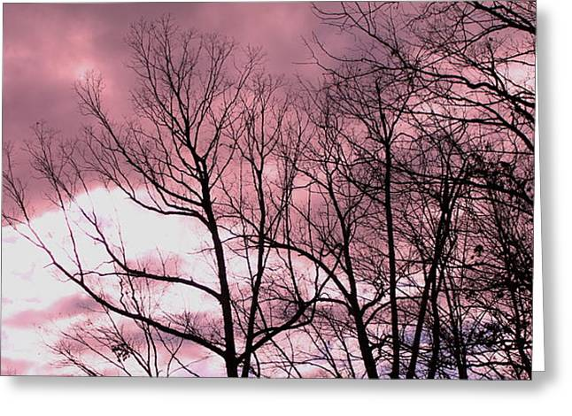Greeting Card featuring the photograph Red Dawn by Candice Trimble