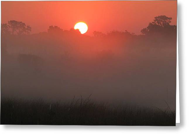 Greeting Card featuring the photograph Red Dawn by Peg Urban