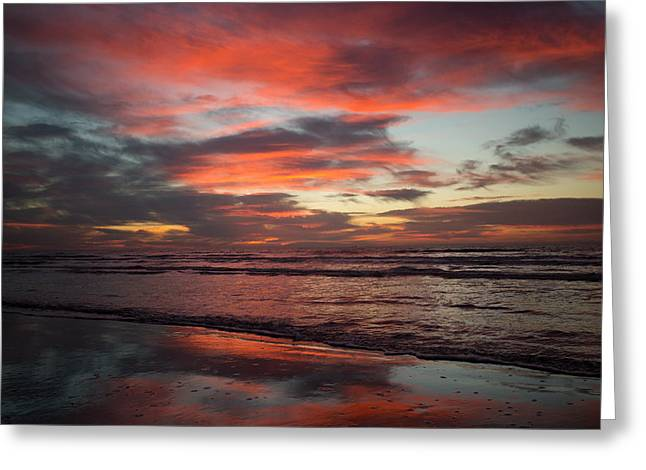 Greeting Card featuring the photograph Red Dawn by Sharon Jones