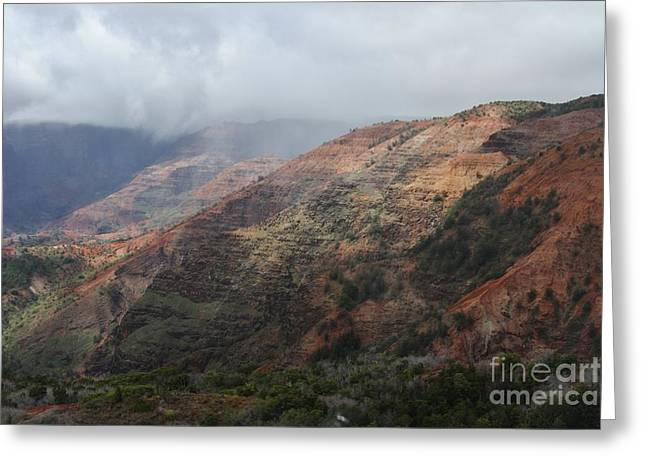 Red Dirt Greeting Card by Butch Phillips