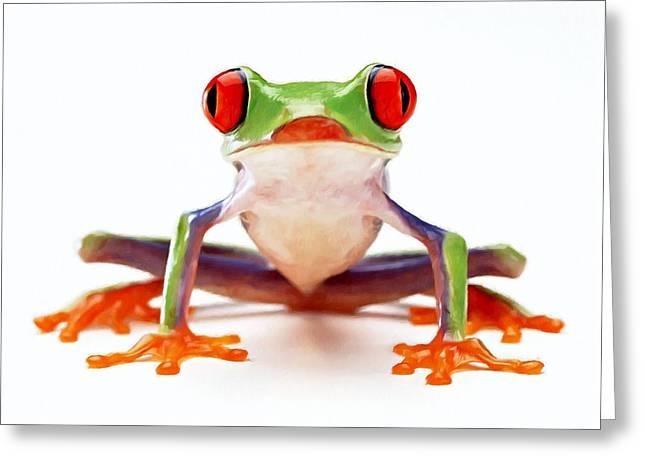 Red-eye Tree Frog 2 Greeting Card