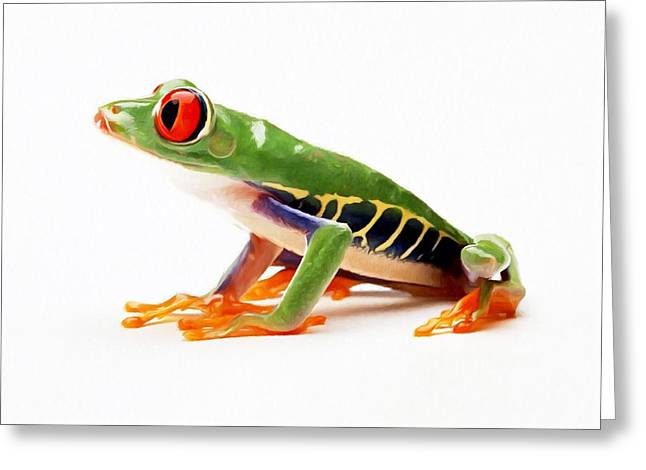 Red-eye Tree Frog 4 Greeting Card by Lanjee Chee