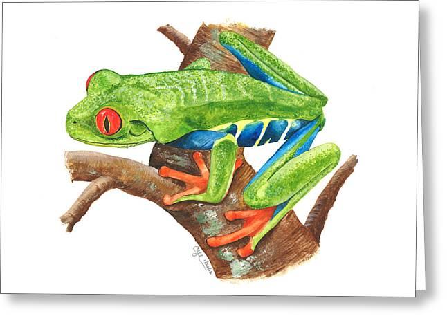 Red-eyed Treefrog Greeting Card