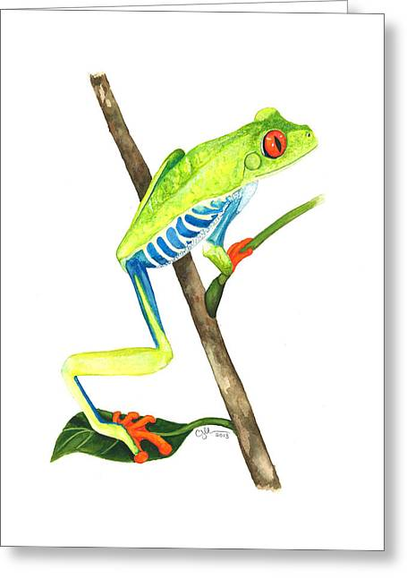 Red-eyed Treefrog From La Selva Greeting Card