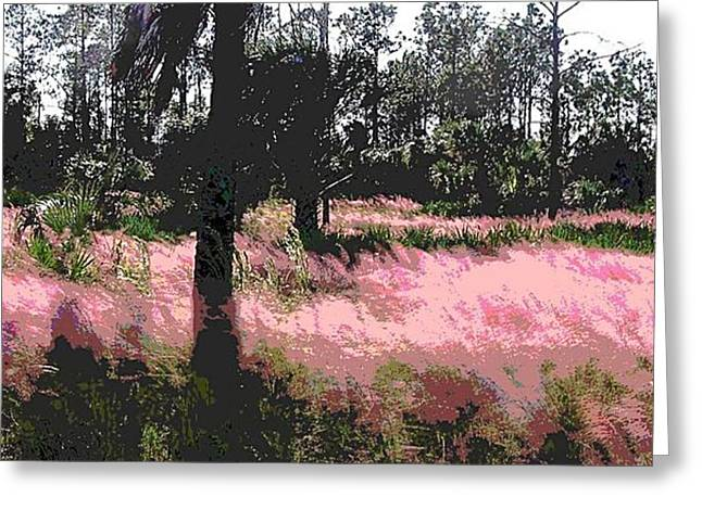 Red Fire Grass Field Gulf Coast Florida Greeting Card