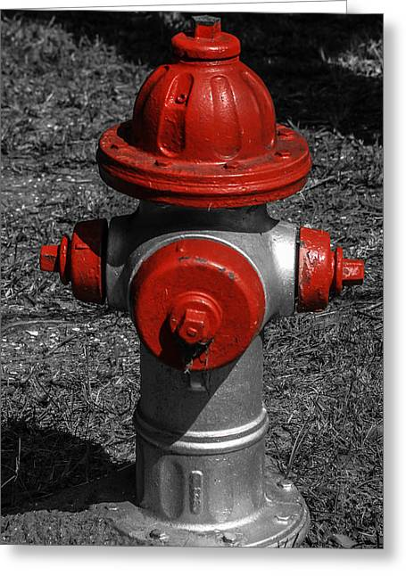 Red Fire Hydrant Greeting Card by Steven  Taylor