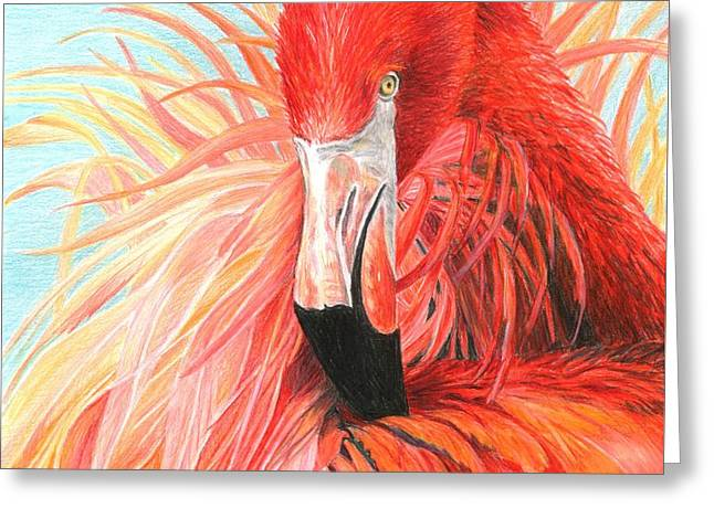 Red Flamingo Greeting Card