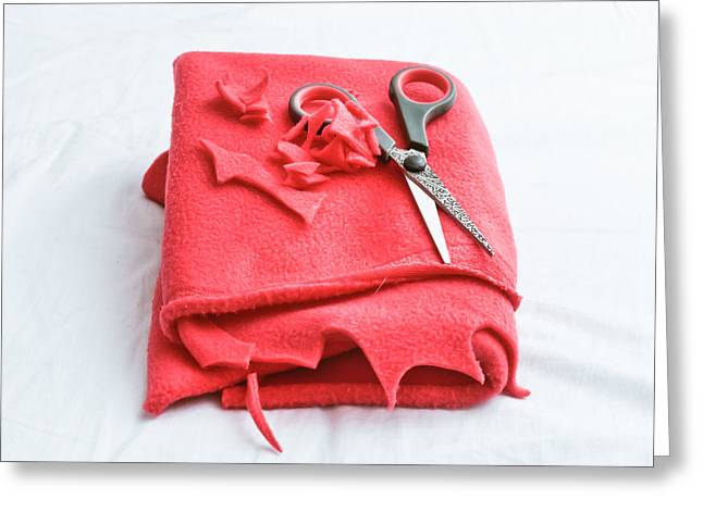 Red Fleece Greeting Card by Tom Gowanlock